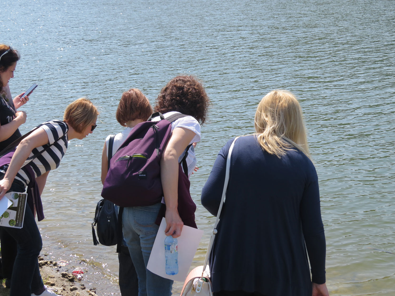 Jezero Ćelije